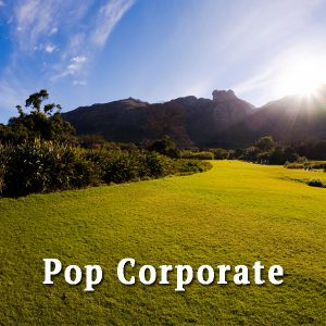 Sunny Valley, pop corporate
