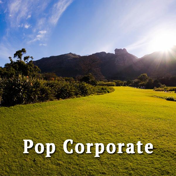 Sunny Valley, pop corporate