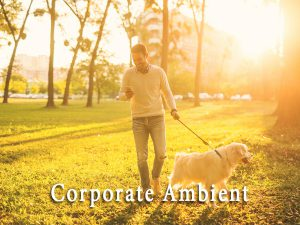 corporate-ambient
